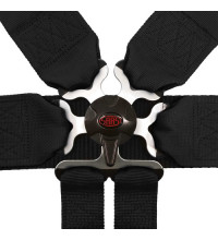 6 POINT FIA HARNESS REMOVABLE BLK