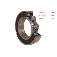 ELECTRIC MOTOR BEARING