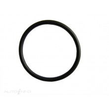 THERMOSTAT SEAL