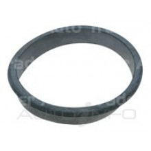 Fuel Pump Tank Seal